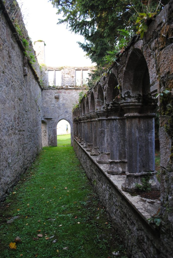 Ireland-Abbey-Church-Ruins-on-a-golfcourse-on-the-way-to-Limerick-18