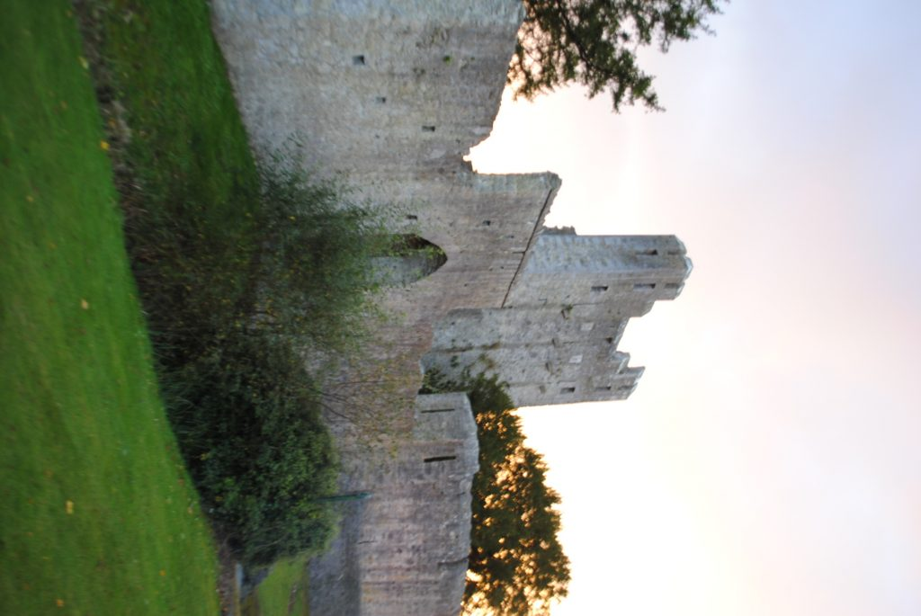 Ireland-Abbey-Church-Ruins-on-a-golfcourse-on-the-way-to-Limerick-29