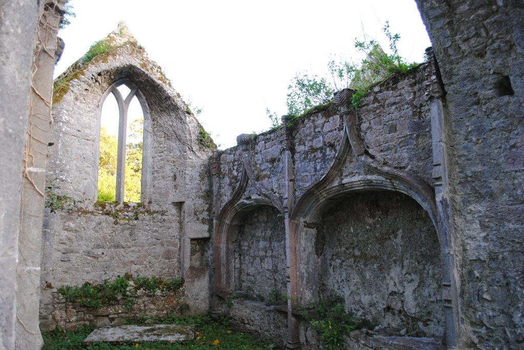 Ireland-Abbey-Church-Ruins-on-a-golfcourse-on-the-way-to-Limerick-8