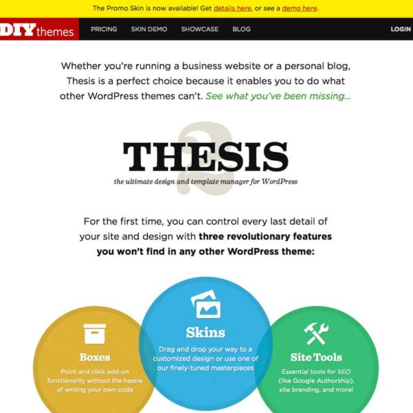 thesis-diytheme