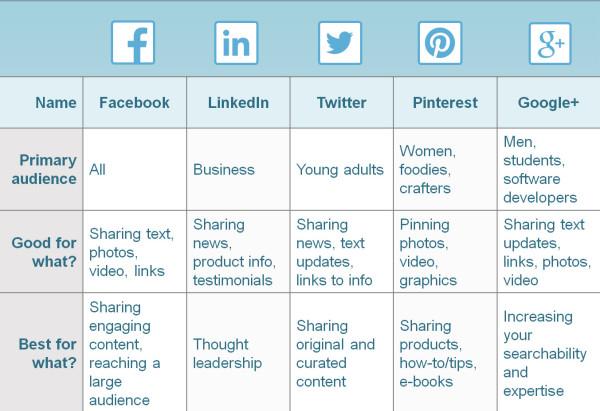 Social media -marketing Audience Breakdown template