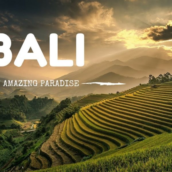 living in bali - ryan lima expat travel blogger internet marketer 2018